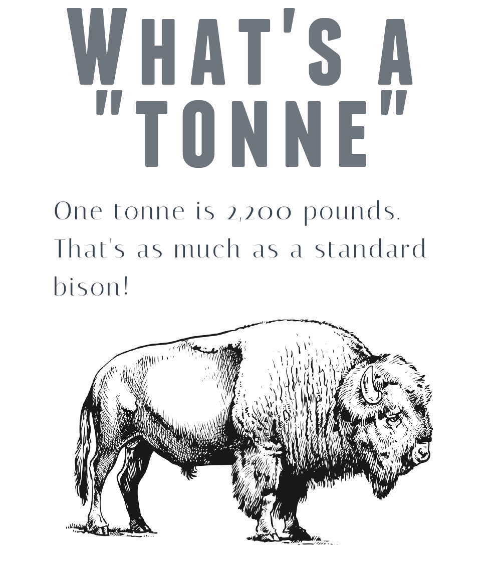 How much weight is one tonne